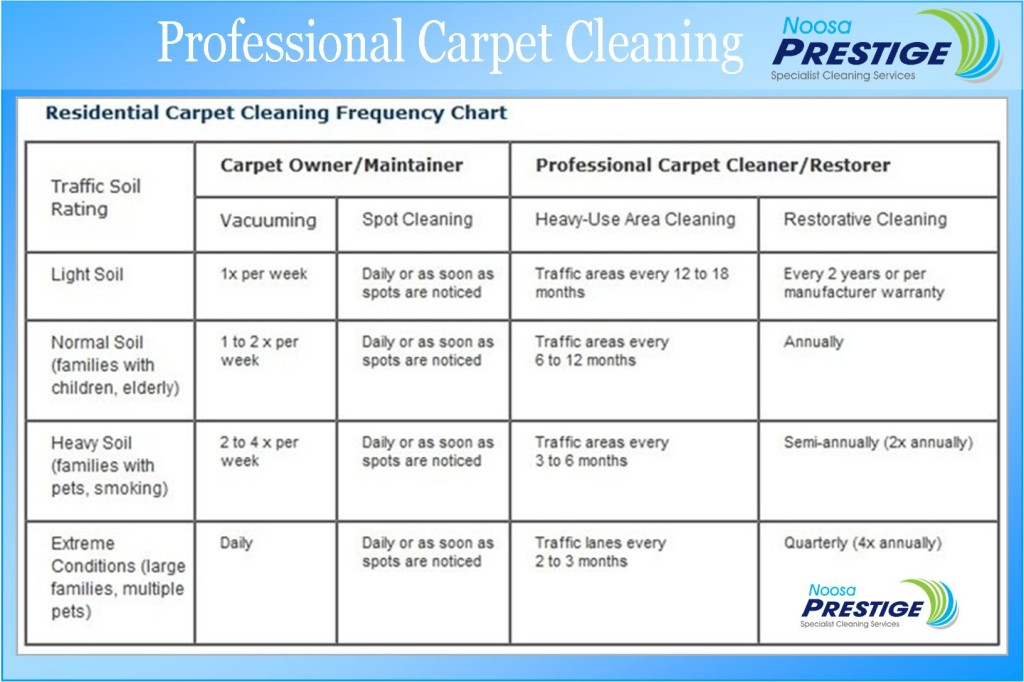 Noosa's Quality Carpet Cleaning Service specialists in ...
